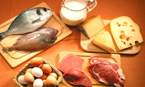 Alimentos permitidos en una dieta proteica