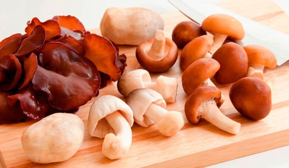 recetas para personas acido urico alto regimen alimenticio para la gota acido urico pdf 2014