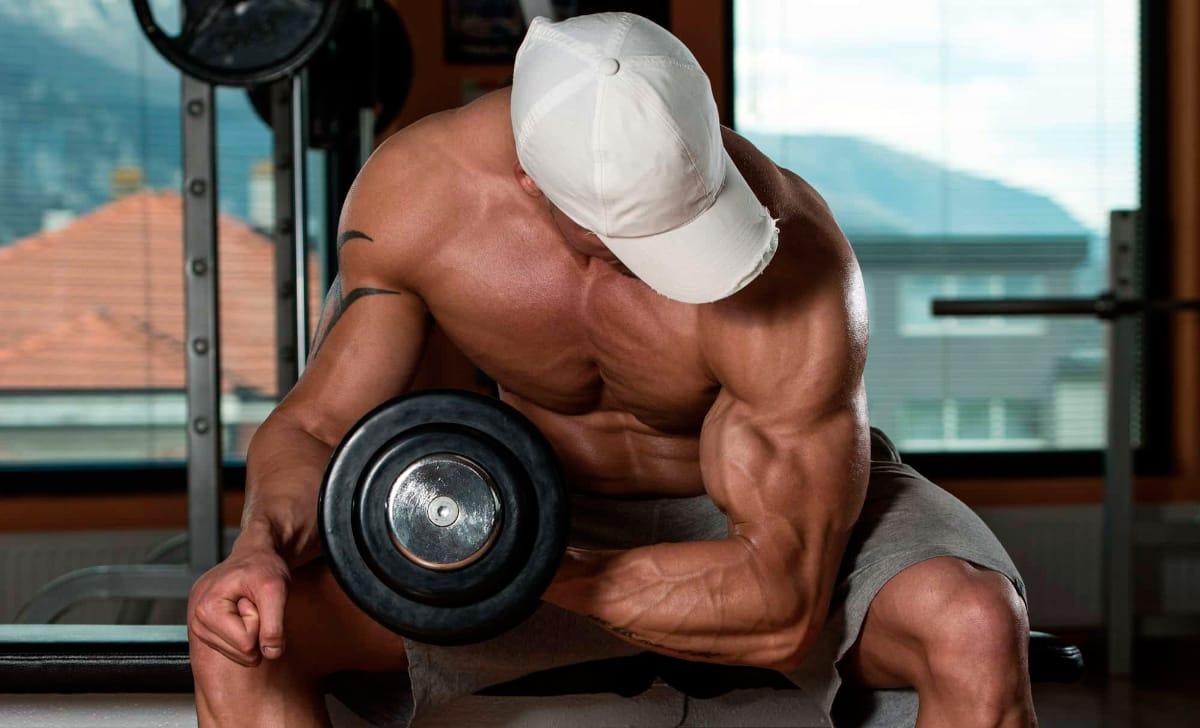 dieta musculacion y perdida de peso