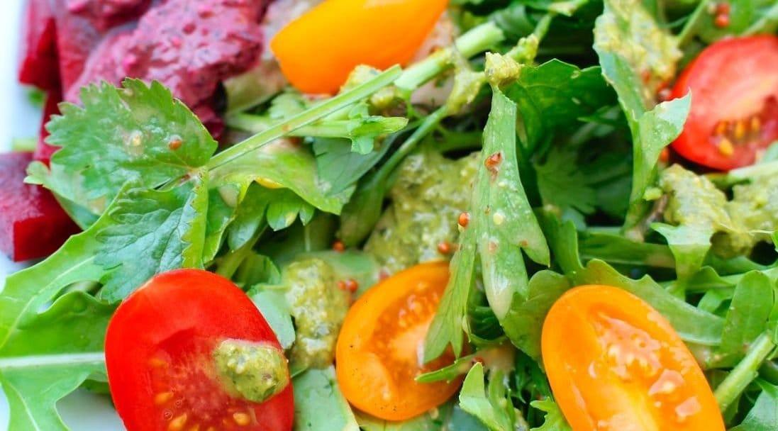 Dieta blanda gastroenteritis vegetariana